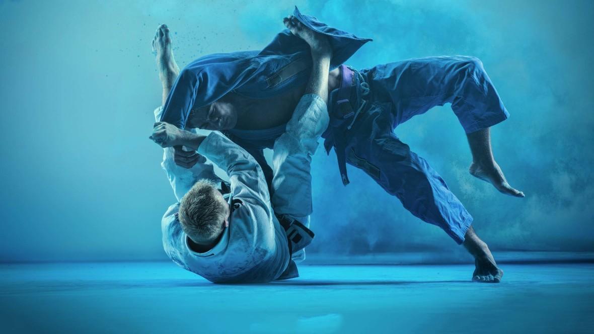 Internasjonal ju jitsu-leir - thumbnail