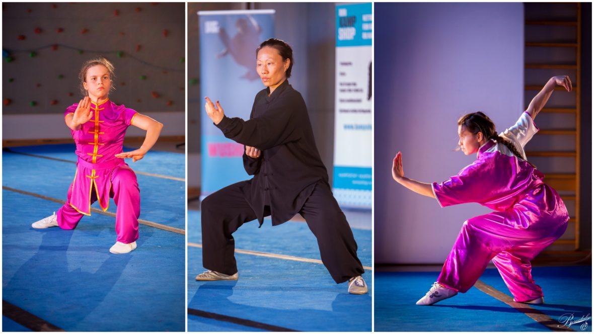 Wushu/Kungfu: Vi søker ny forbundstrener! - thumbnail
