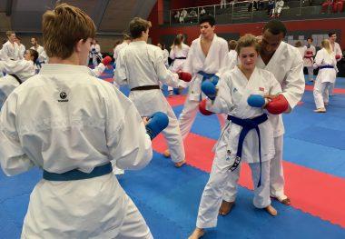 Karate: Informasjon om kick off og nordisk mesterskap - thumbnail