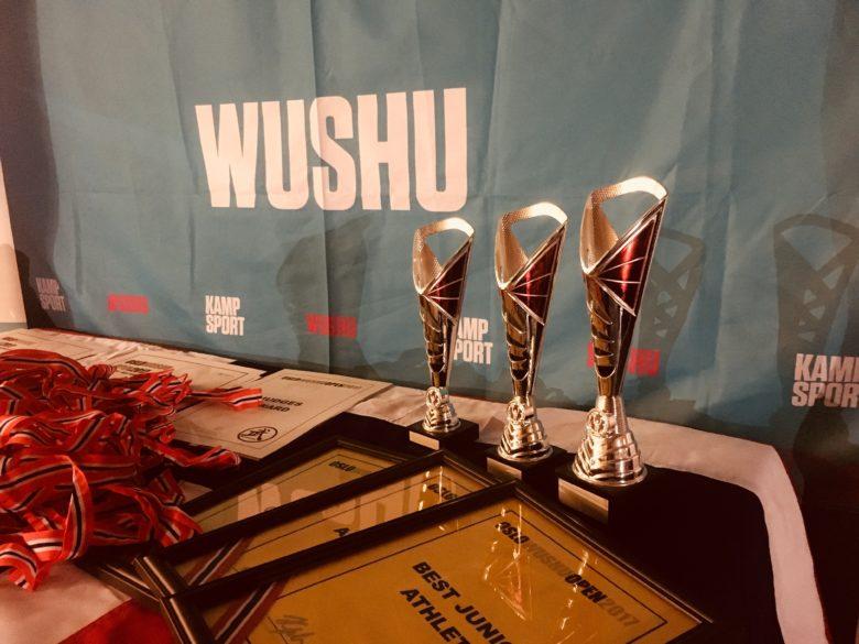 Flotte prestasjoner i Oslo Wushu Open - thumbnail