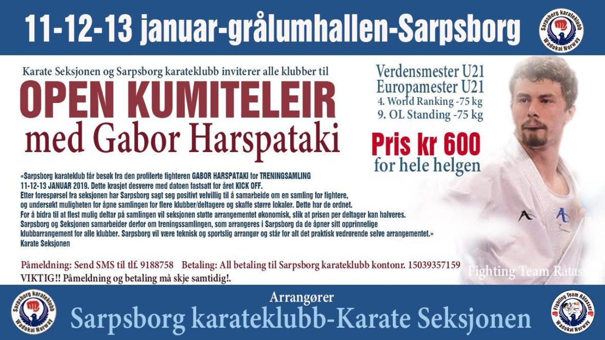 Karateseksjonens Kick Off erstattes av samling i Sarpsborg - thumbnail