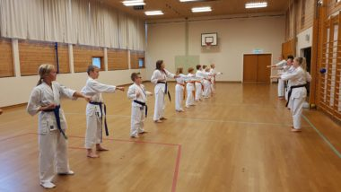 Fullkontakt karate: Kvinesdal Karate arrangerte kyokushin-minileir - thumbnail
