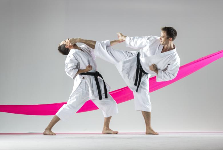 Shotokan: Utvidet frist for å søke seksjonstilskudd - thumbnail