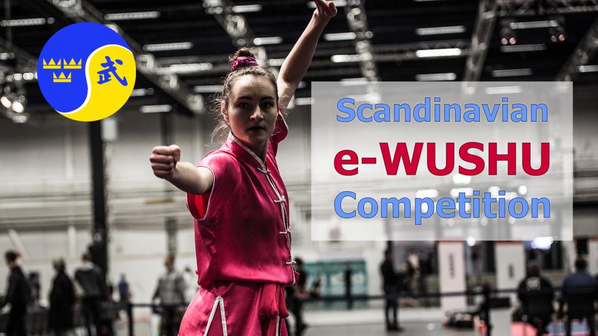 Scandinavian e-Wushu Competition LIVE - thumbnail